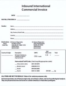 international commercial invoice templates pdf , commercial invoice international commercial invoice template