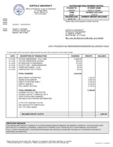editable legal invoice template – printable receipt template law firm invoice template word