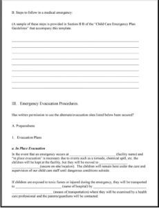 editable south carolina child care services child care emergency child care disaster plan template