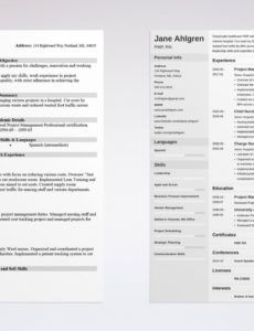 free chronological resume template & format examples chronological order resume template excel