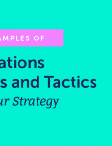 printable 29 effective examples of public relations campaigns and tactics public relations campaign plan template doc