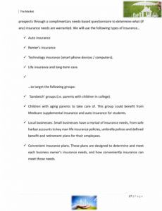 sample insurance agency business plan template sample pages  black insurance agency business plan template word