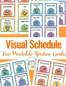 editable visual schedule  free printable routine cards  natural autism visual schedule template