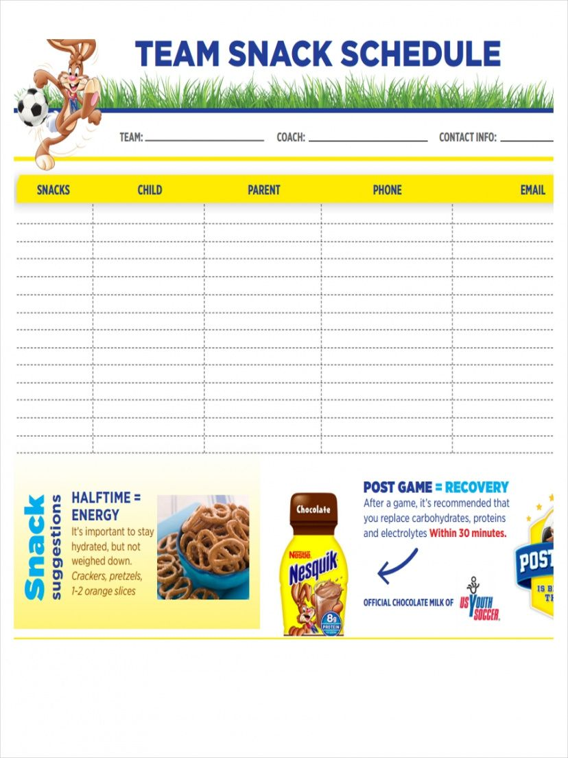 free 8 snack schedule examples & samples in pdf  examples sports snack schedule template