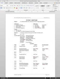 printable fsms audit plan template  fds11602 safety audit schedule template word