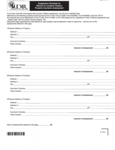 Editable Schedule Of Insurance Template Doc Example