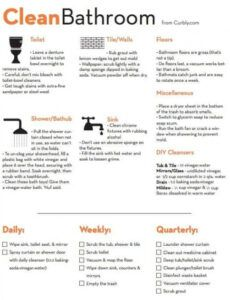 Professional Bathroom Cleaning Schedule Template