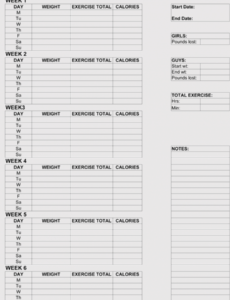 Professional Workout Training Schedule Template Pdf Sample