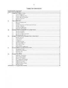 Real Estate Agent Business Plan Template Pdf Example