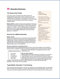 sample sample business plan  fotolip template for writing a business plan pdf
